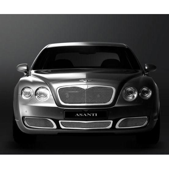 Grilles 2004-2008 Bentley GT/GTC (Standard) Accessories